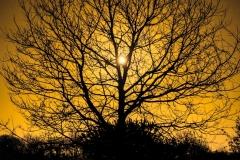 Lune d'hiver, Bretagne